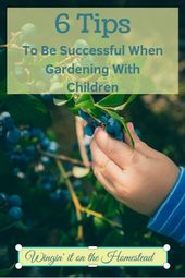 Gardening with small children: 6 tips to be successful  – Beginner Gardening Tips and Tricks