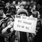 Marche du Siècle : les pancartes les plus créatives des manifestants pour dénoncer le réchauffement climatique