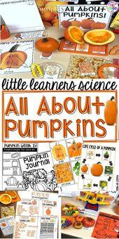 Alles über Kürbisse – Wissenschaft für kleine Lernende (Vorschule, Vorschule & Kinder) – Fall Theme