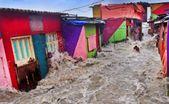 Un pianeta devastato dai cambiamenti climatici: i vincitori del concorso fotografico CIWEM 2019