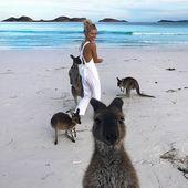 8.854 Gefällt mir, 83 Kommentare – Vouge Magazine (vouge fashion _… – #australia #Gefällt #Kommentare #Magazine