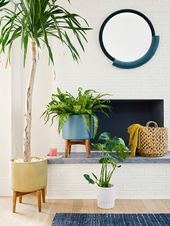 7 Ways to Add Color to Your Home for an Instant Mood Booster – Front + Main