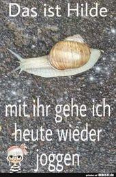 Lustige Bilder Das ist Hilde.. mit ihr g…#lustigebilder #niedliche#Witze