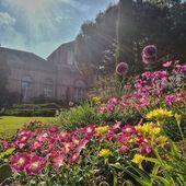 Aber Aus Botanischen Daher Dem Der Die Ein Eine Fur Garten Hier Instagram Ktgkarlsruhetourismusgmbh Mac In 2020 Sommer Botanischer Garten Sonnenstrahlen