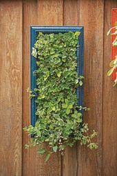 Heilkräutergarten #BlumeGardenBorders #ContainerGardenBeans #ContainerGardenS …   – Mini Garden