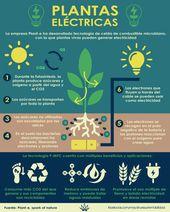 Plantas eléctricas, electricidad a base de plantas