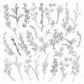 Zeichnen Blumen Schwarzes Zeichnen Krauter Pflanzen Und Blumen Krauter Pflanzen Schwarzes Zeichnen Pflanz Pflanzen Blumen Im Blumentopf Blumen