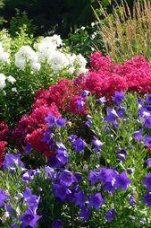 c821d3d9db3bb3c564c871427dbe740e - What Zone Is Ottawa In For Gardening
