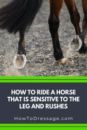 HOW TO RIDE A HORSE THAT IS SENSITIVE TO THE LEG AND RUSHES