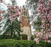27 Causes Why It is Nice To Attend Michigan State College