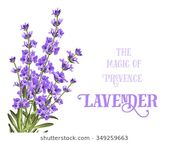 The elegant card of lavender with frame of flowers and text. Lavender garland for …   – Paper crafts