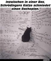 Meanwhile, in a box, Schrödinger's cat forges a ..