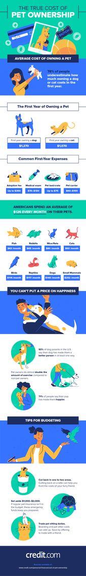 Die Kosten für einen Hund oder eine Katze