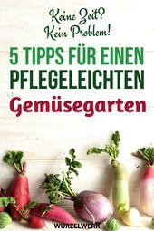 No time, no problem! 5 tips for a low-maintenance vegetable garden  – Landleben und Bauerngarten