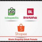 Wajib Tahu Ini Cara Bisnis Dropship Untuk Pemula Di 2020 Blogging Blog Marketing