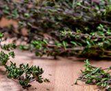 أهم فوائد شاي الزعتر الصحية ويب طب Plants