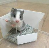 chai del rosario.hamster   – Für Tiere – DIY