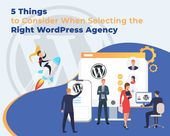 5 Things to Consider When Selecting the Right WordPress Agency