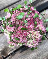 Idées de décoration d'automne avec grosse poule et hortensias   – Blumen