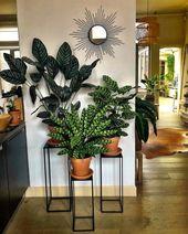 58 Ideen für DIY-Pflanzenstände bringen viel Grün in Ihr Wohnzimmer   – Pflanzen in der Wohnung I cremeguides.com