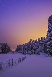 Photo of Erstaunliche Träume, hübsche Dinge und alles dazwischen