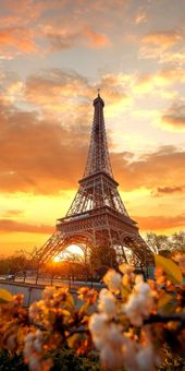 Cute Eiffel Tower picture