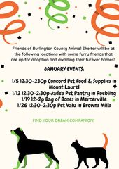 Join Us At Dadz Bar And Grill Any Time From 1pm 5pm On Sunday March 17th For A St Patrick S Day Bu Events For The Burlington County Animal Shelter Anima