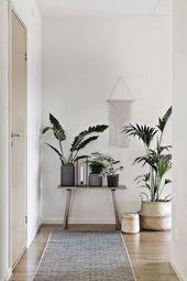 Appartement | Idées vivantes | Couloir Couloir | Meubles d'entrée | Vestiaire | Plantes d'intérieur B …