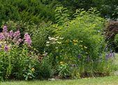 Kreative DIY Rain Garden Schritte und Pflanzen Ideen (3 – outdoor
