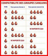 Compatibilité des groupes sanguins – – Compatibilité des groupes sanguins So ….