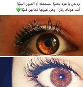 فديتهم العيون البنيه انا Beautiful Words Romantic Quotes Arabic Quotes