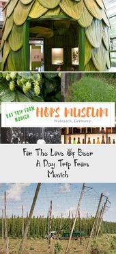 Learn about hops, the most important ingredient for beer at the German Hops Muse…