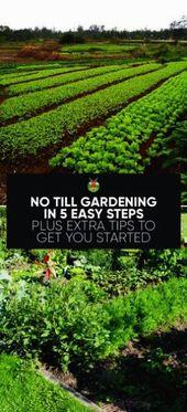 Garden Supplies In Cebu; Gardening Services Christchurch round Gardening Jobs In… – Vegetable Gardening Beginner