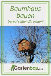 Baumhaus bauen: Ist eine Baumhaus-Baugenehmigung nötig? Kann man ein Baumhaus i…