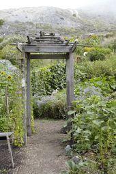 Biodynamic Gardening Edible Garden Gardenista Garden Modern Garden Org Biodynamic Edible Biodynamic Gardening Edible Garden Garden Organization