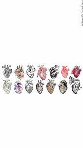 Herzkunst – das physische Herz kombiniert mit den metaphorischen, symbolischen A – Kunst Bilder