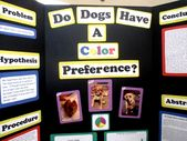 Super science fair projects with dogs learning Ideas