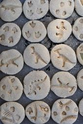 DIY-Dinosaurier-Fossilien mit Salzteig