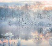 Über den Winter nachdenken Fotografie von © Paul Jolicoeur