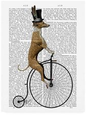 Fab Funky Greyhound on Black Penny Farthing Bike Canvas Art – 27 x 33.5