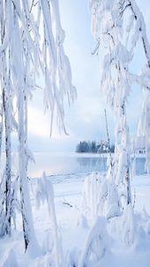 Photo of Handy Wallpaper, #Mobile # Wallpaper #Winterbilderhintergrund