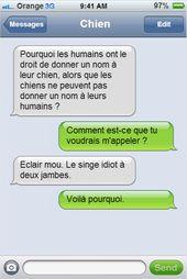 Si votre chien pouvait écrire des textos, il vous enverrait sûrement des messages comme ceux-là… C'est glorious !