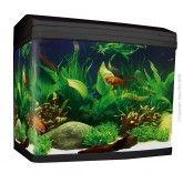 Aquastyle 620t 130l Tall Curved Glass Aquarium Gloss Black Fish Tank Stand Aquarium Fish Tank Aquarium