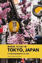 The place To Eat in Tokyo, Japan: 17 Greatest Eating places in Tokyo