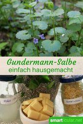 Gundermann-Heilsalbe für schlecht heilende Wunden