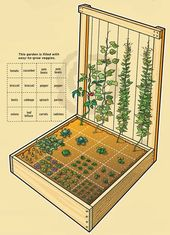 Gemüsegarten Design & Pläne