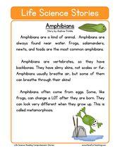 Amphibians Life Science Reading Comprehension Worksheet | Have Fun Teaching