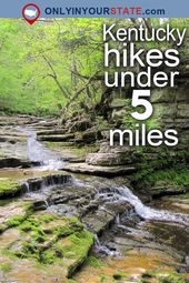 12 Unimaginable Hikes Below 5 Miles Everybody In Kentucky Ought to Take