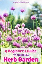 A Beginners Guide To Starting A Herb Garden