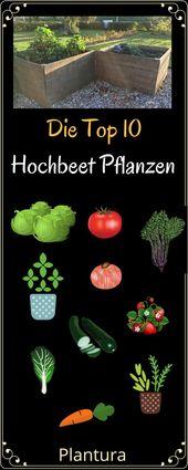 Die Top 10 der besten Hochbeet-Pflanzen